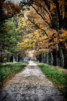 Alley by Rozmberk by tomsumartin