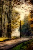 Way into my dreams by tomsumartin