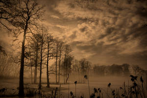 Winter serenity II