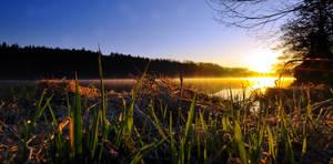 Good morning by tomsumartin