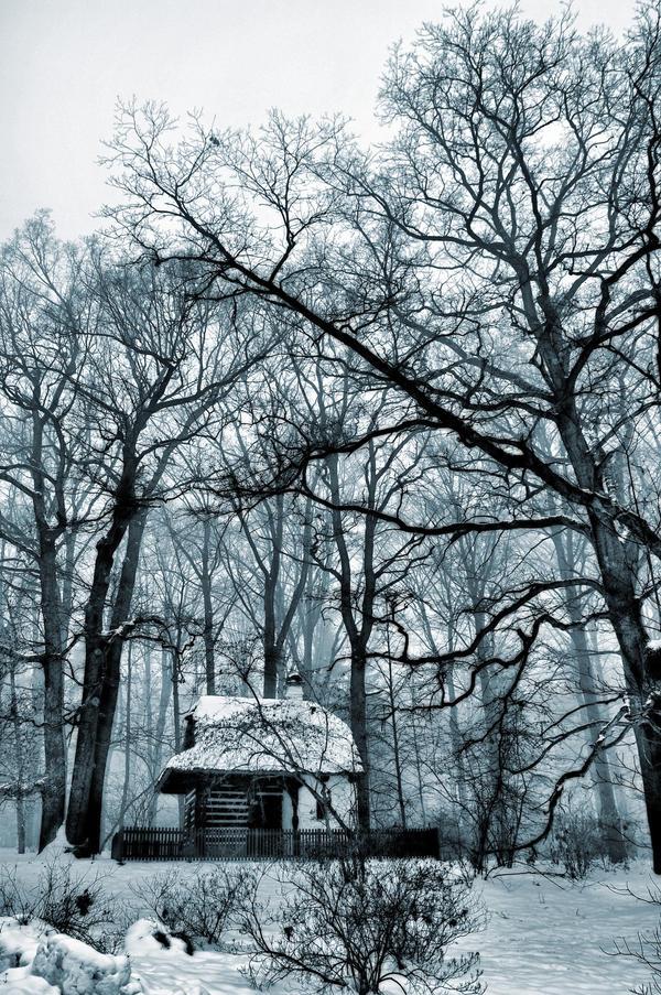 Winter Dream II by tomsumartin