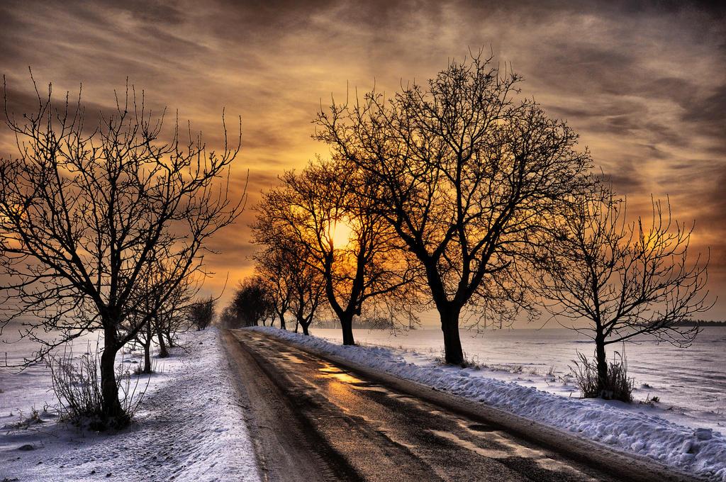 Winter sun by tomsumartin