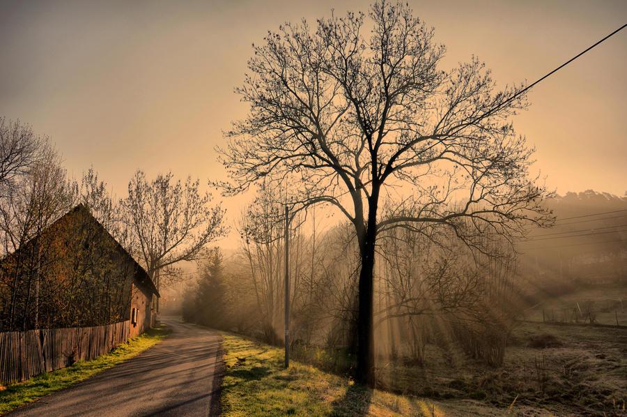 Vesnicke rano by tomsumartin