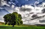 The Czech countryside