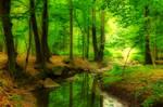 Jevansky potok
