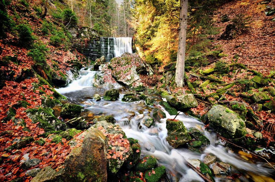 Cernohorsky potok by tomsumartin
