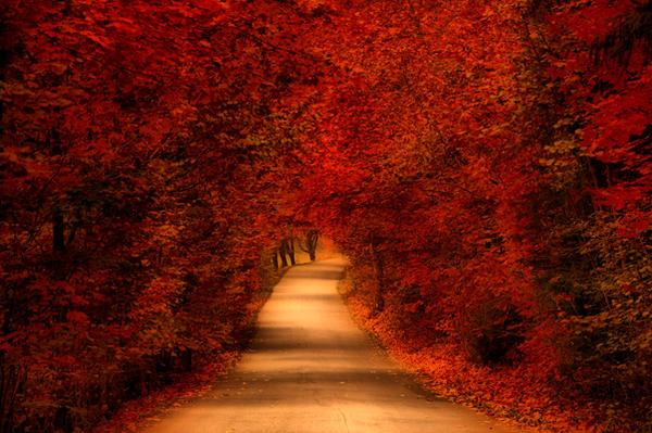 Podzim 2013 III by tomsumartin