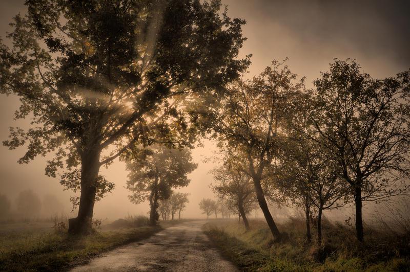 Podzim 2013 IV by tomsumartin