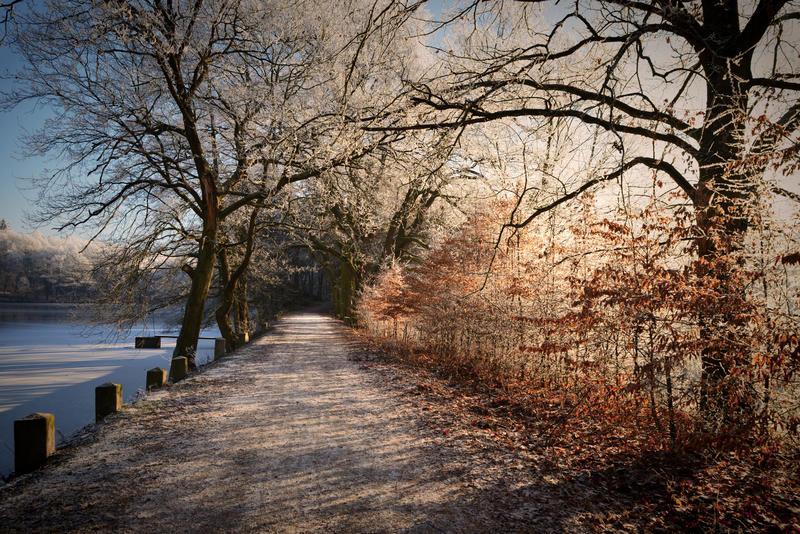 Winter love III by tomsumartin