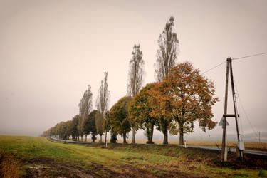 Memories of autumn II