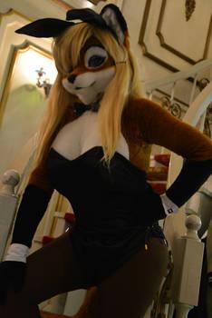 Bunny Lisa