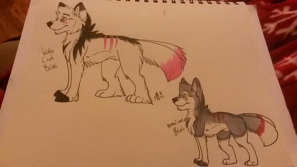 Brixii traditional reference by whitewolfspup