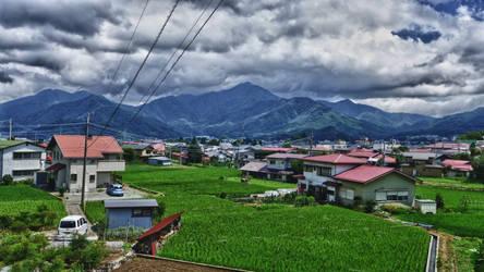 Rice Field by Red-Waltz