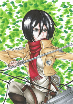 Mikasa - The Forest