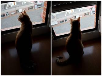 Waiting for somethin' by maRinEta1o8