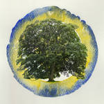 Tree target
