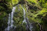 Dhoon Glen waterfall