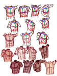 Sexy abs studies/ male torso tutorial thingy