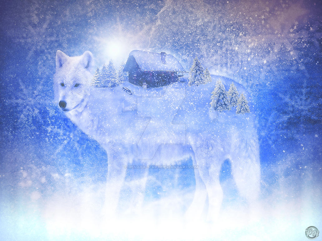 Wild Spirit by Renata-s-art
