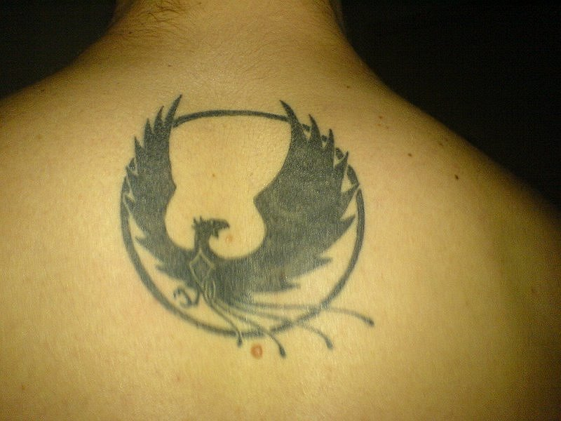 My Phoenix by fabiocralves