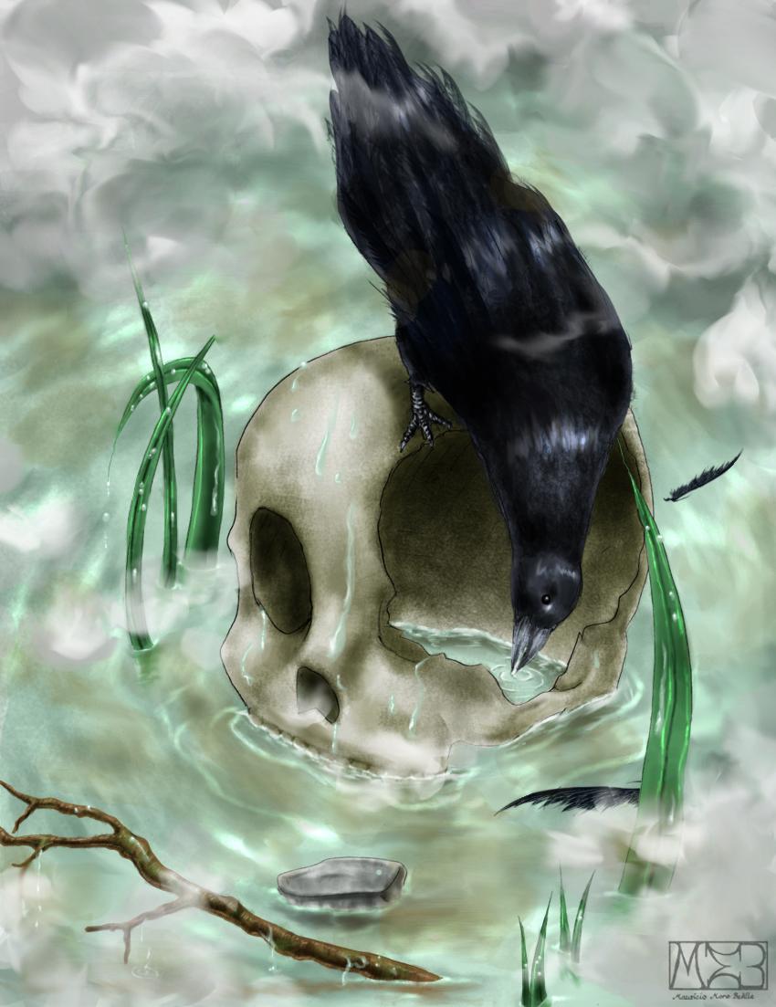 -Gift-  Raven