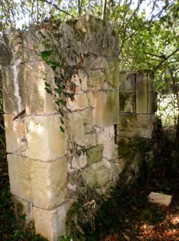 Ruins - 4