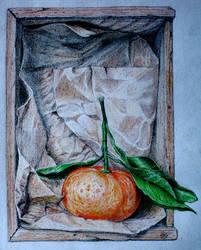 tangerine in a box by bogatyrkhan