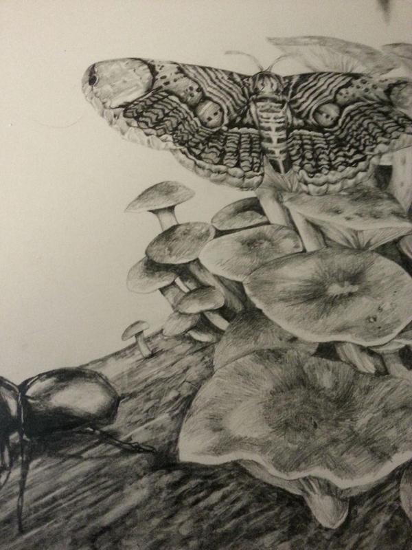 Detail shot of portfolio by GraveyardBat