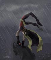 Robin in the Rain. by natea21