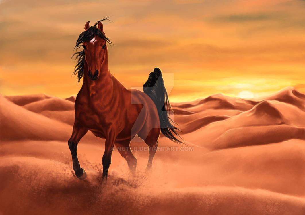 Deviantarts Robot Horse: Arabian Horses In The Desert Wallpaper