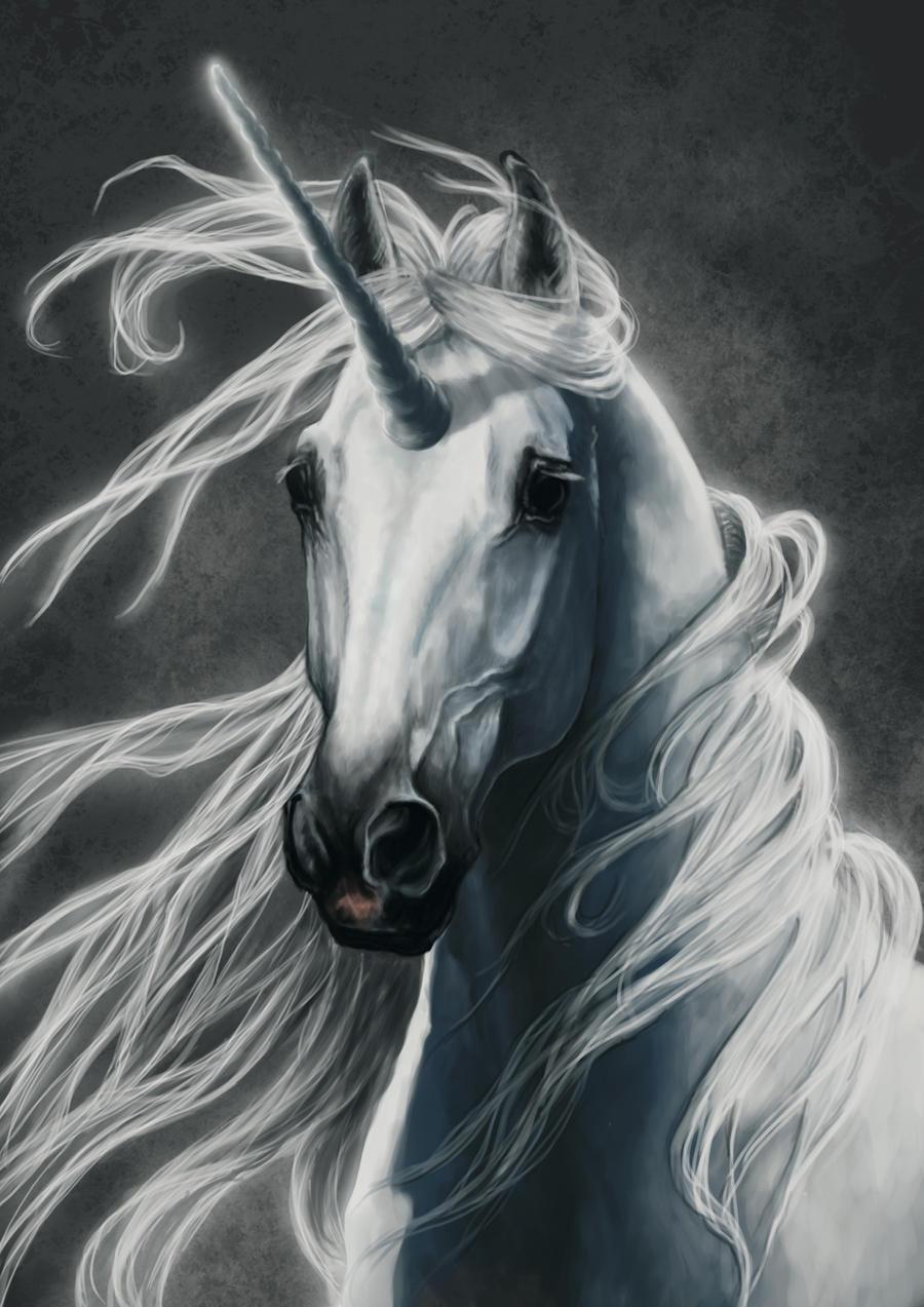 Unicorn by NutLu on DeviantArt