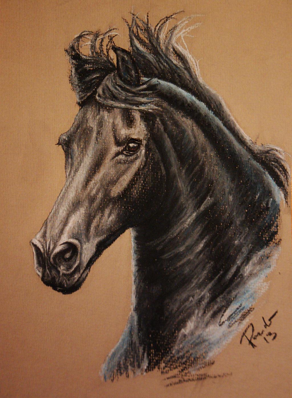 Frisean horse by NutLu