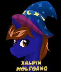 Xaldin Con Badge | C | by CadetRedShirt
