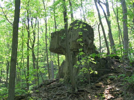 Dog Sphynx Rock