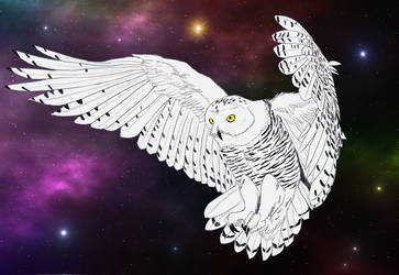 Space Owl by Shanglon