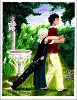 Draco and Harry by Purplieh