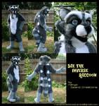 Dae the Inverse Raccoon by MangoIsland