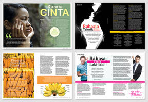 Magazine Layout by anomalisoul