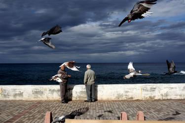 fly away by jeteng