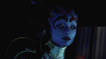 Mass Effect 2: The Justicar