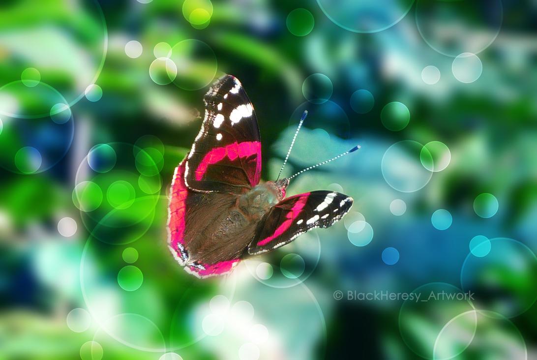 Comme voler sur ses ailes... by BlackHeresy