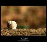 The Fall 10 by palabrasdedragon