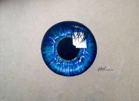 Blue Iris  by AnArtEnthusiast