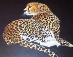 Cheetah by dizzy-indy