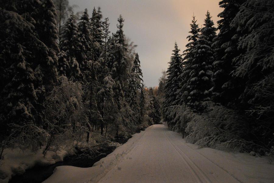 Winter wonderland by Irkaaa