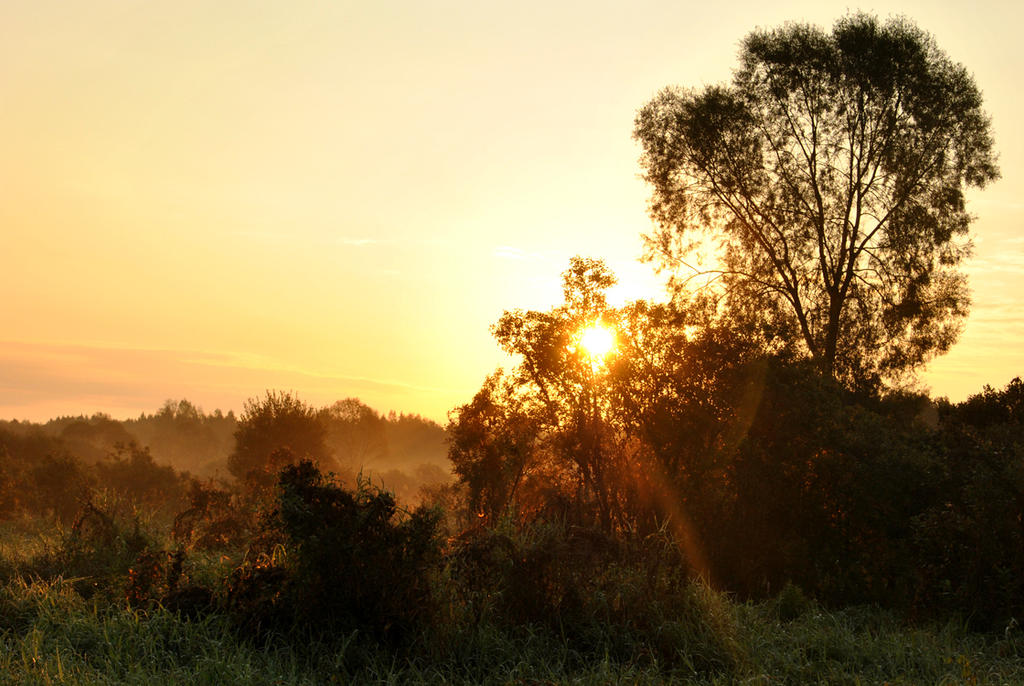 Sunrise by Irkaaa