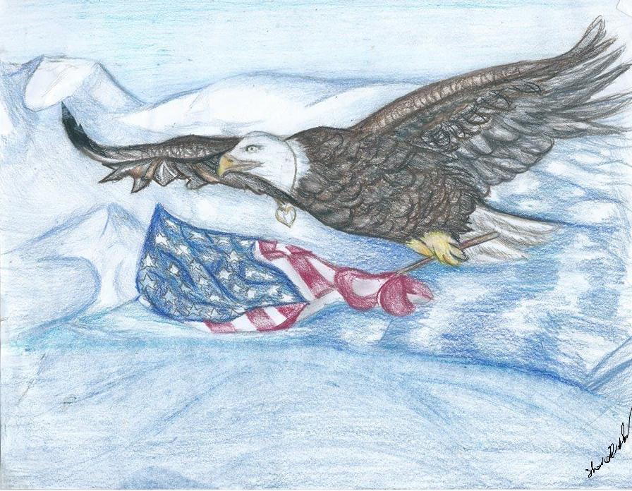 Patriotic Soaring~ by TheDarkEvilGoddess14