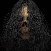 Hair of the Skull
