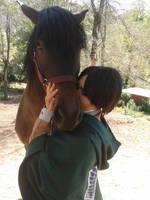 Heichou kissing horse by IzunaUchihaClan