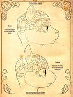 Furry Phrenology by SonOfNothing